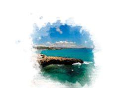 llibre mediterrània
